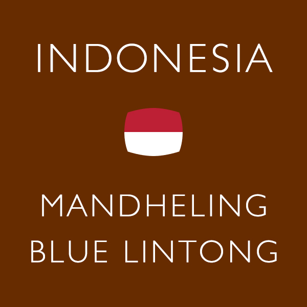 インドネシア サムネイル